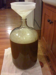 5 gal of wort transfered (no spillage)